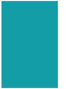 2v1_logo
